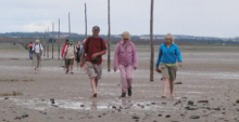 Walking over the Lindisfarne